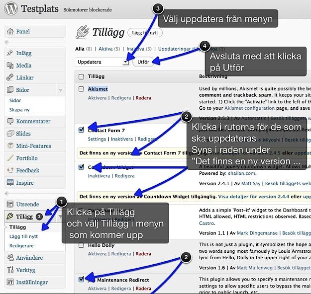 Uppdatera tillägg i wordpress
